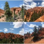 Dag 10-Bryce Canyon NP & Red Canyon