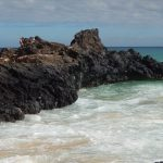 cropped-Maui-Makena-Cove.jpg